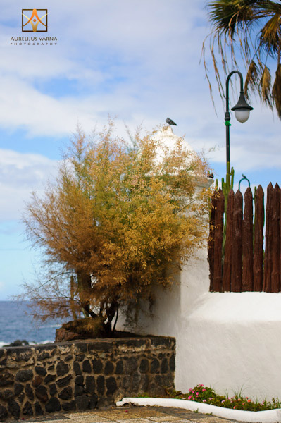 Puerto de La Cruz, architecture of Tenerife