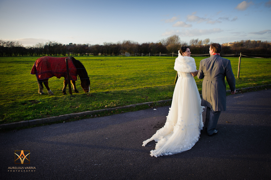 horse groom and the bride