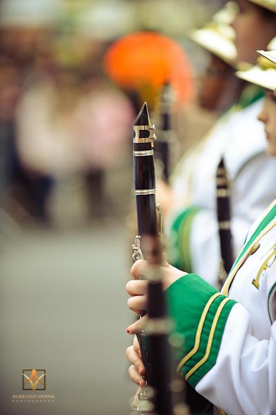 London New Year Parade 2012 (16)